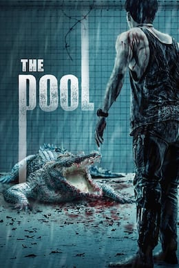 The Pool (2018) streaming