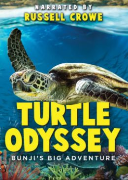 Turtle Odyssey streaming